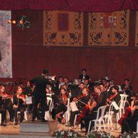 Acto institucional 125 David Castejon 06